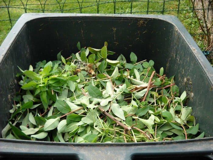 Déchets Vert, Compostage, Recyclage