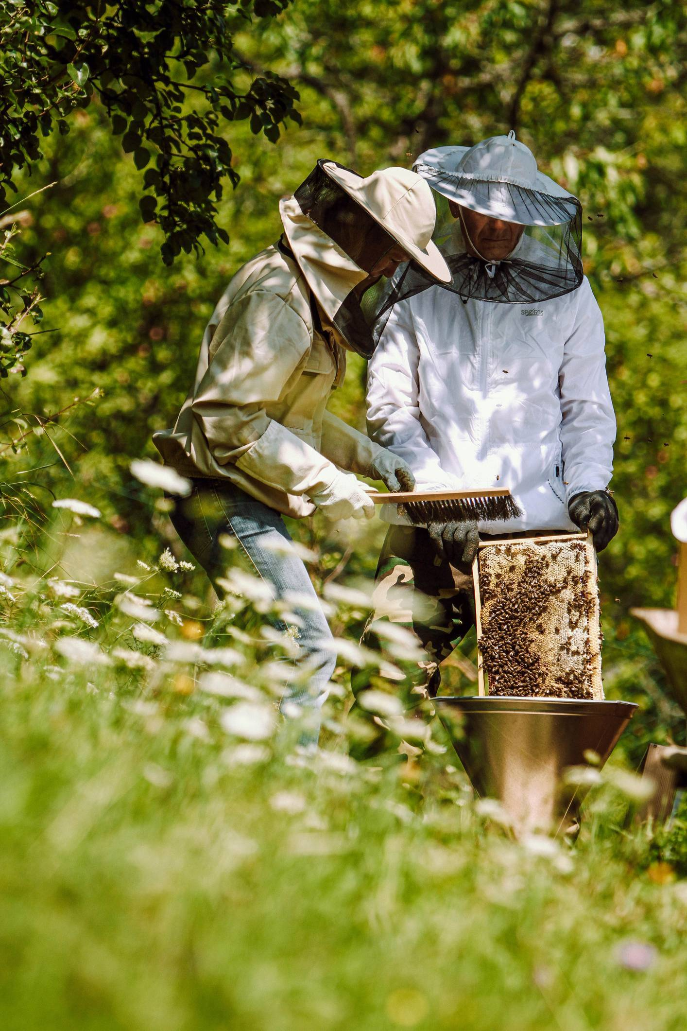 équipements apiculture