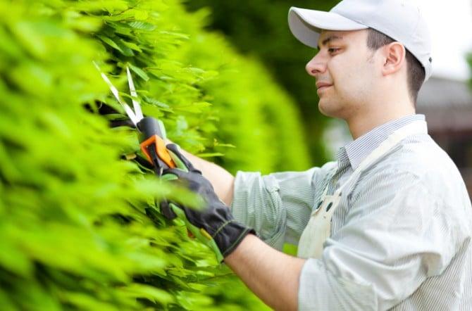 le metier du jardinier