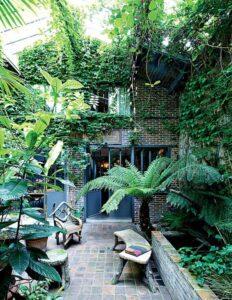 végétation luxuriante et murs végétaux